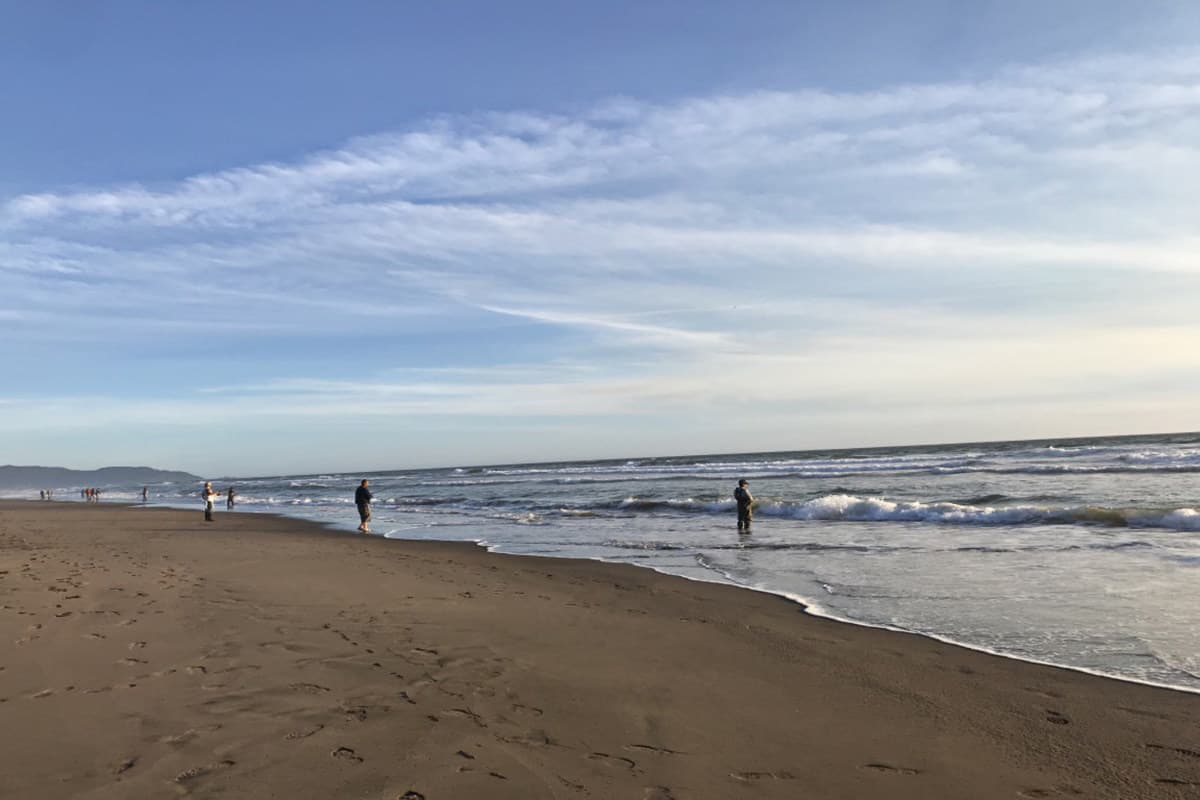 Can You Fish Without A Fishing License In California Beach?