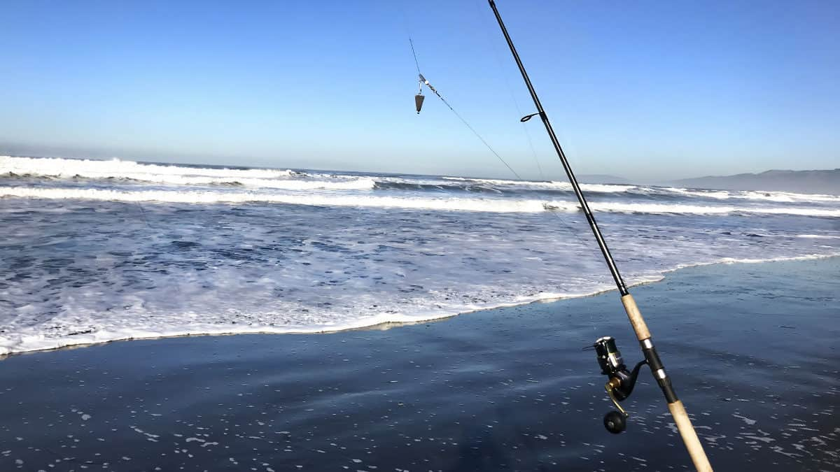 Surf Fishing Rig For Beginners