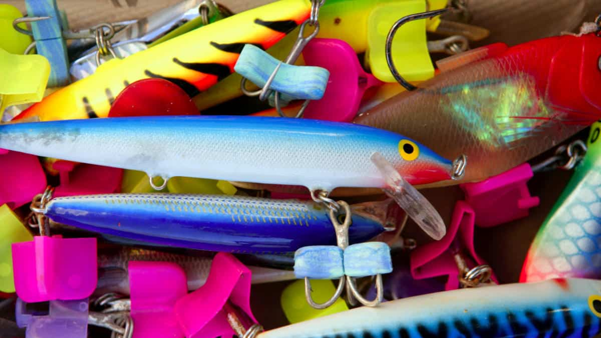 Baits & Lures To Use To Catch Striped Bass