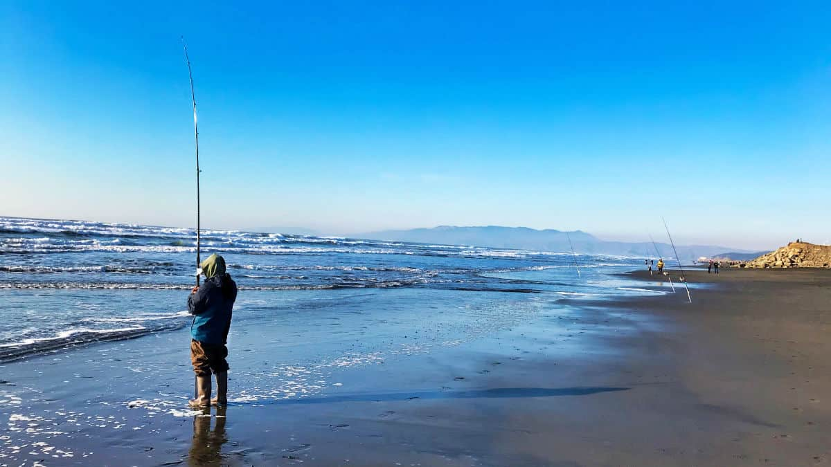 Surf Fishing Guide And Tips For Beginners
