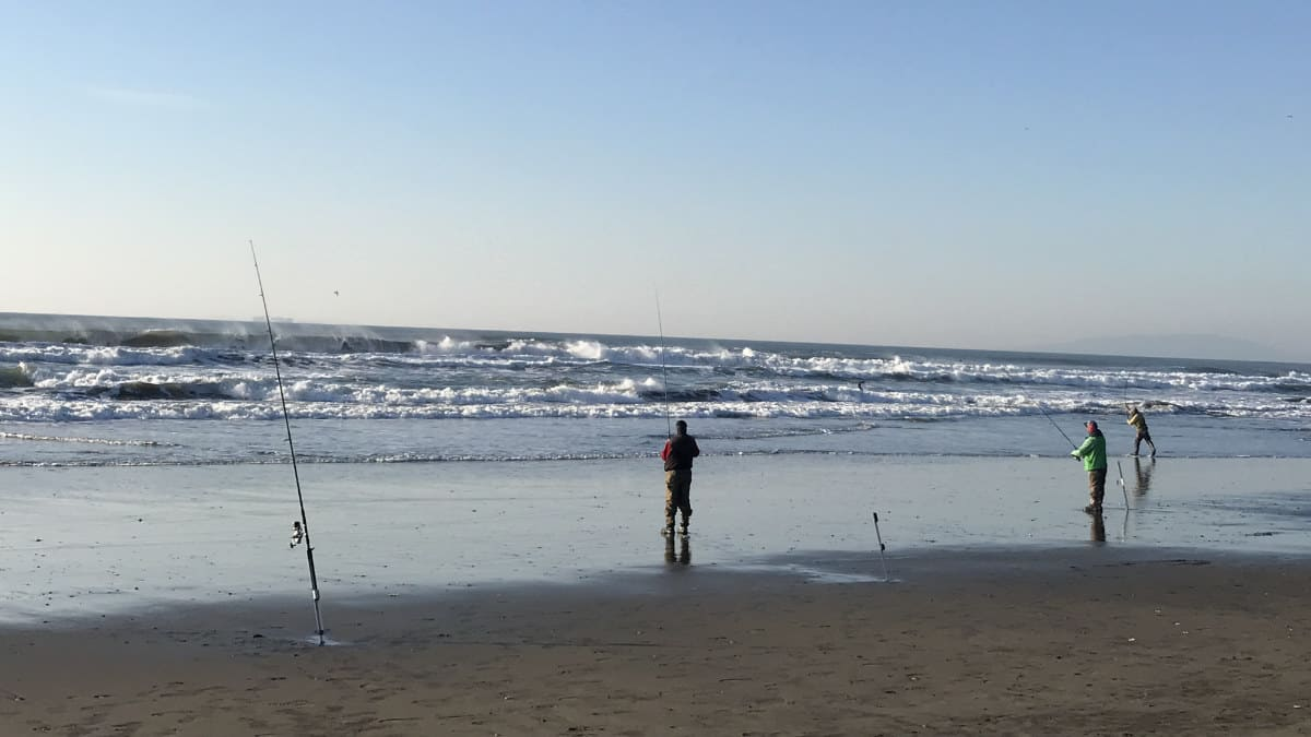 How Far To Cast When Surf Fishing?