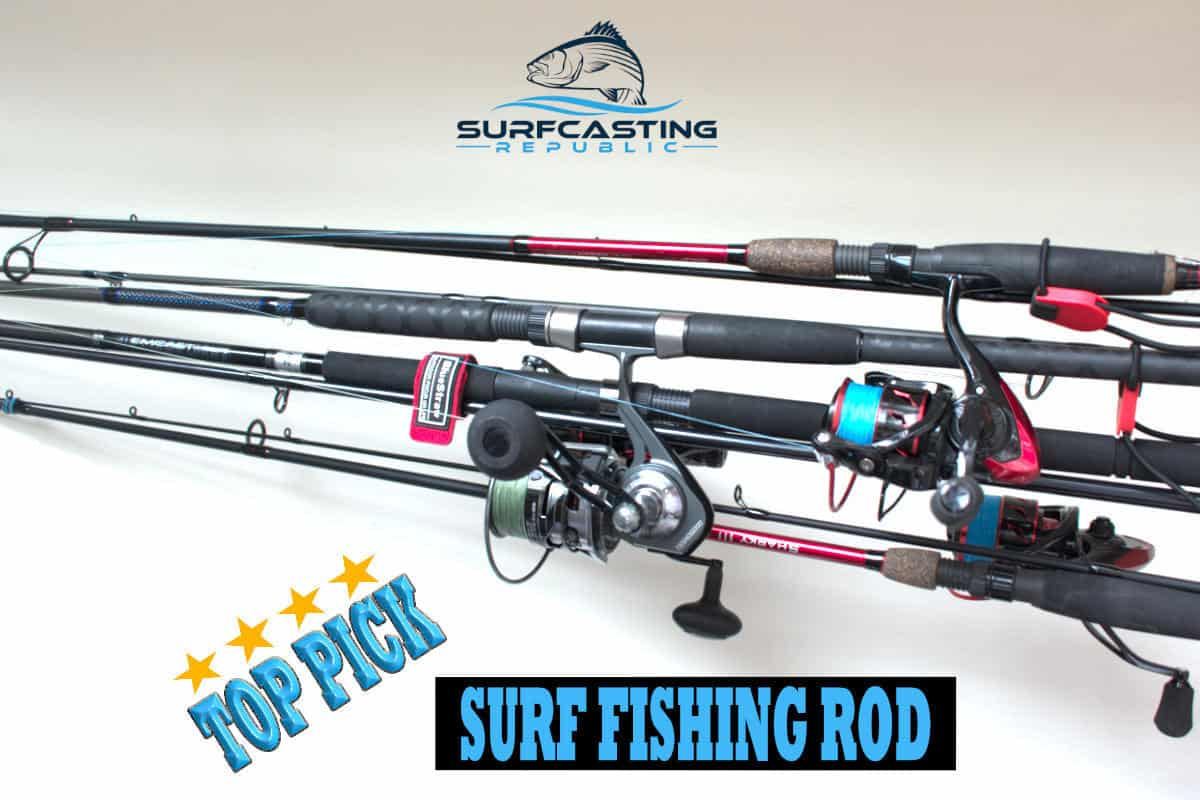 Surf Fishing Rod For Beginners