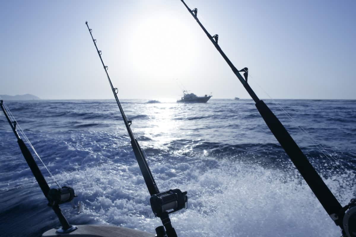 Can You Use Trolling Rod For Surf Fishing?