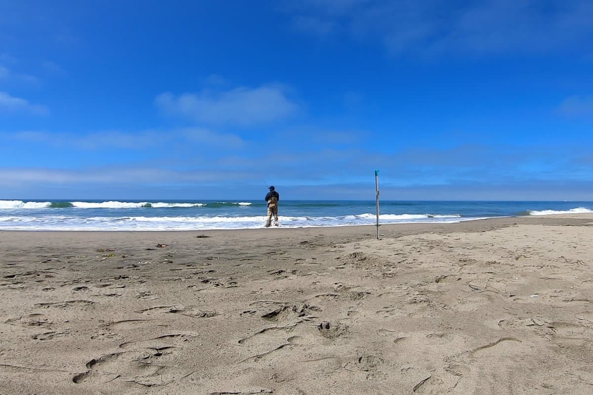 Is Surf Fishing Better at High or Low Tide?