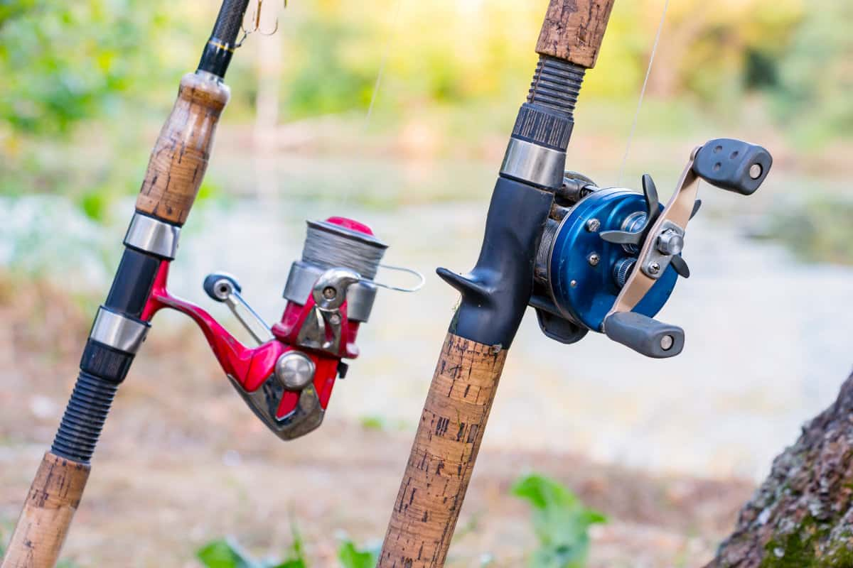 What's the Difference Between Casting & Spinning Rods
