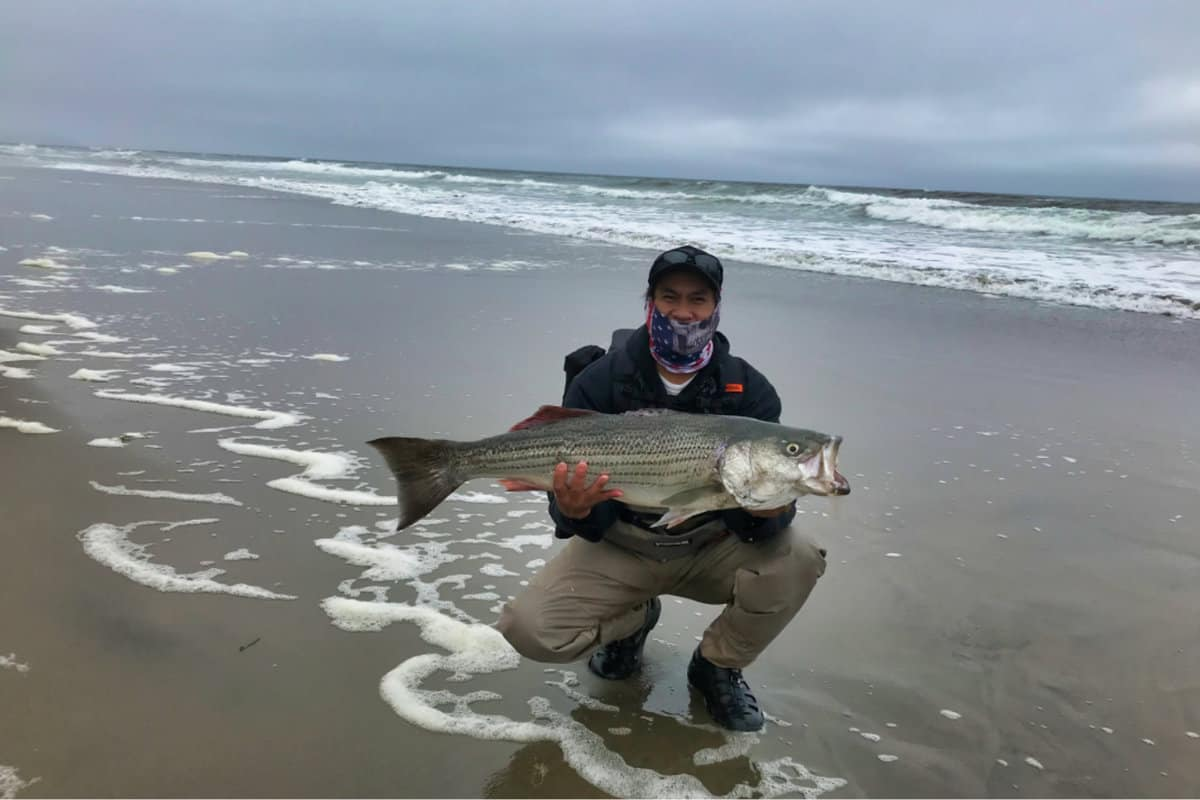 How To Catch Big Fish From the Shore?