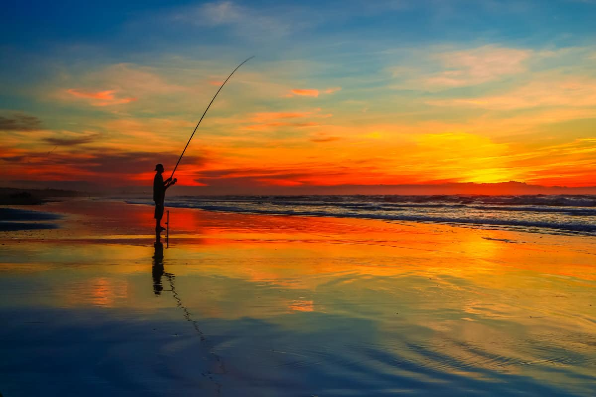 Can You Catch Surfperch At Night?