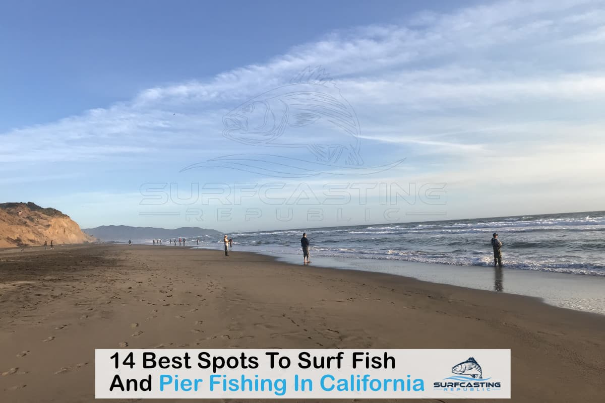 14 Best Spots To Surf Fish And Pier Fishing In California