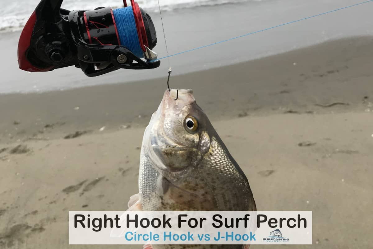 Right Hook For Surf Perch?