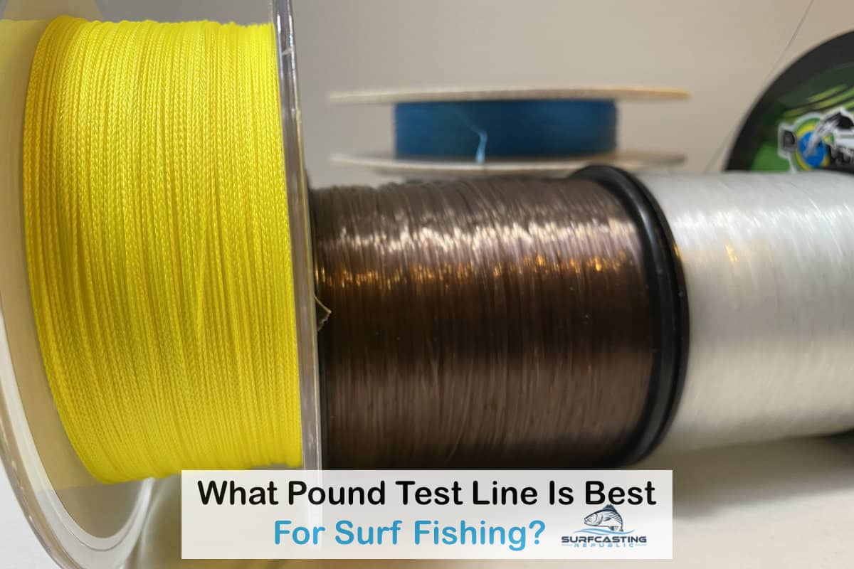 What Pound Test Line Is Best For Surf Fishing