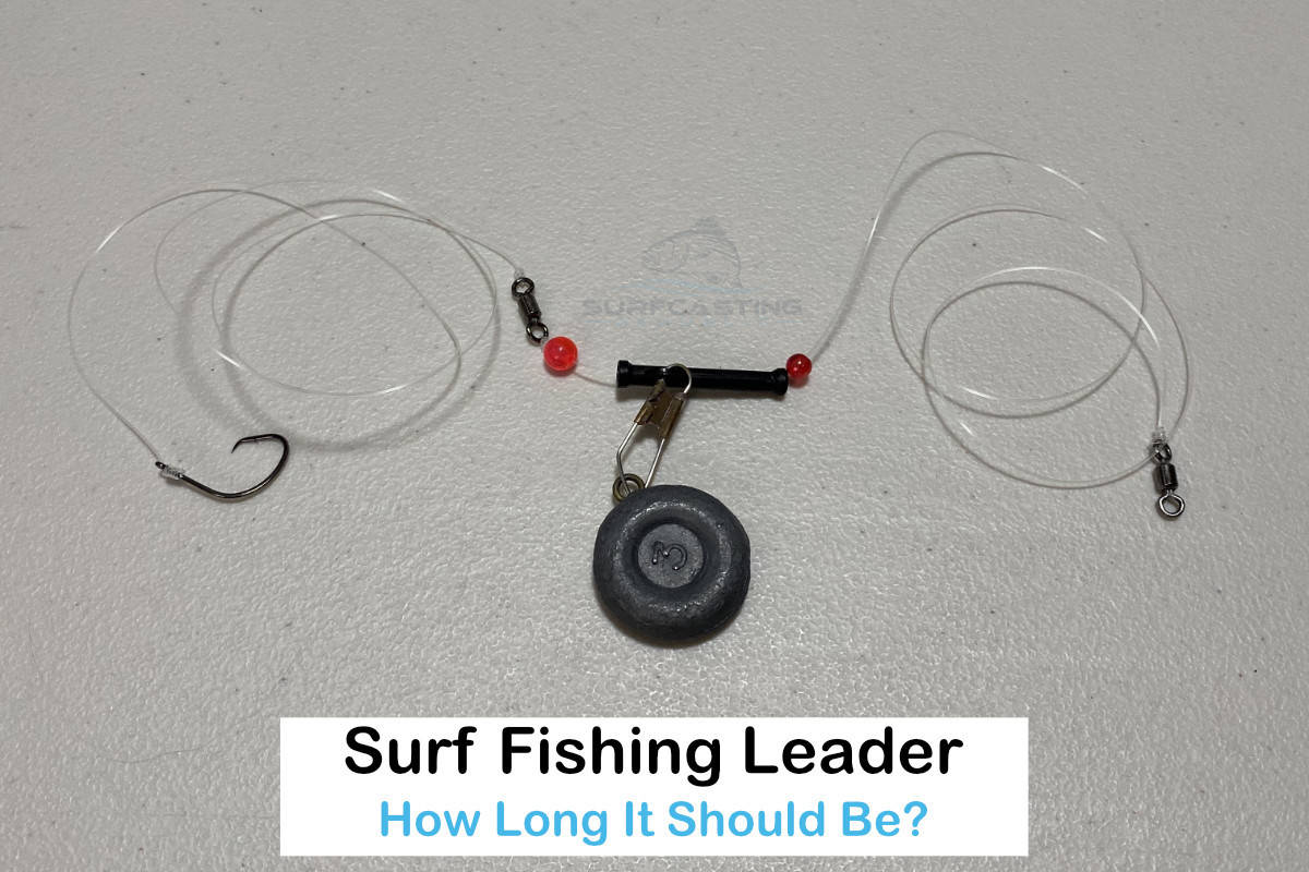 How Long Should a Surf Fishing Leader Be?