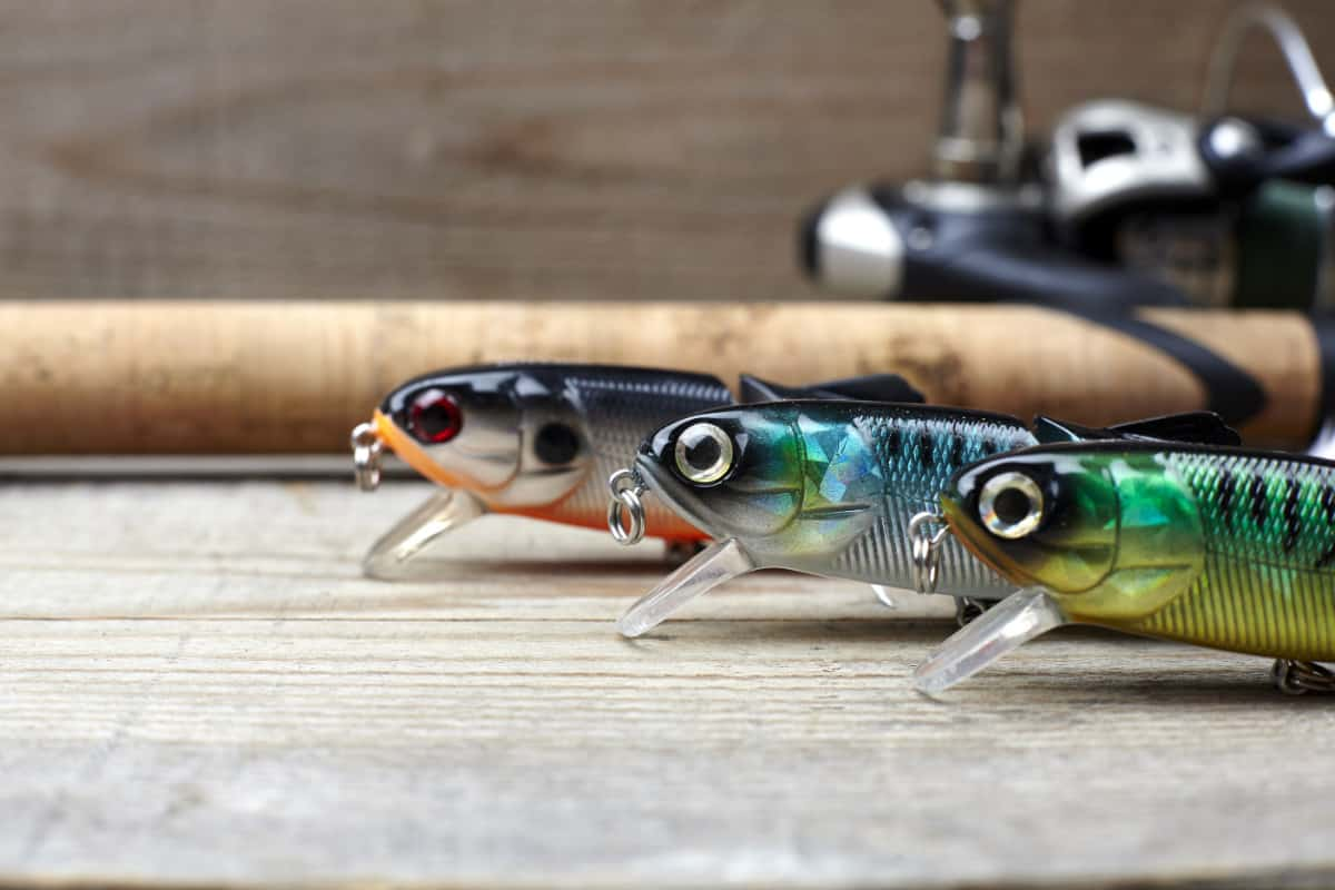 Best Artificial baits For Surf Fishing