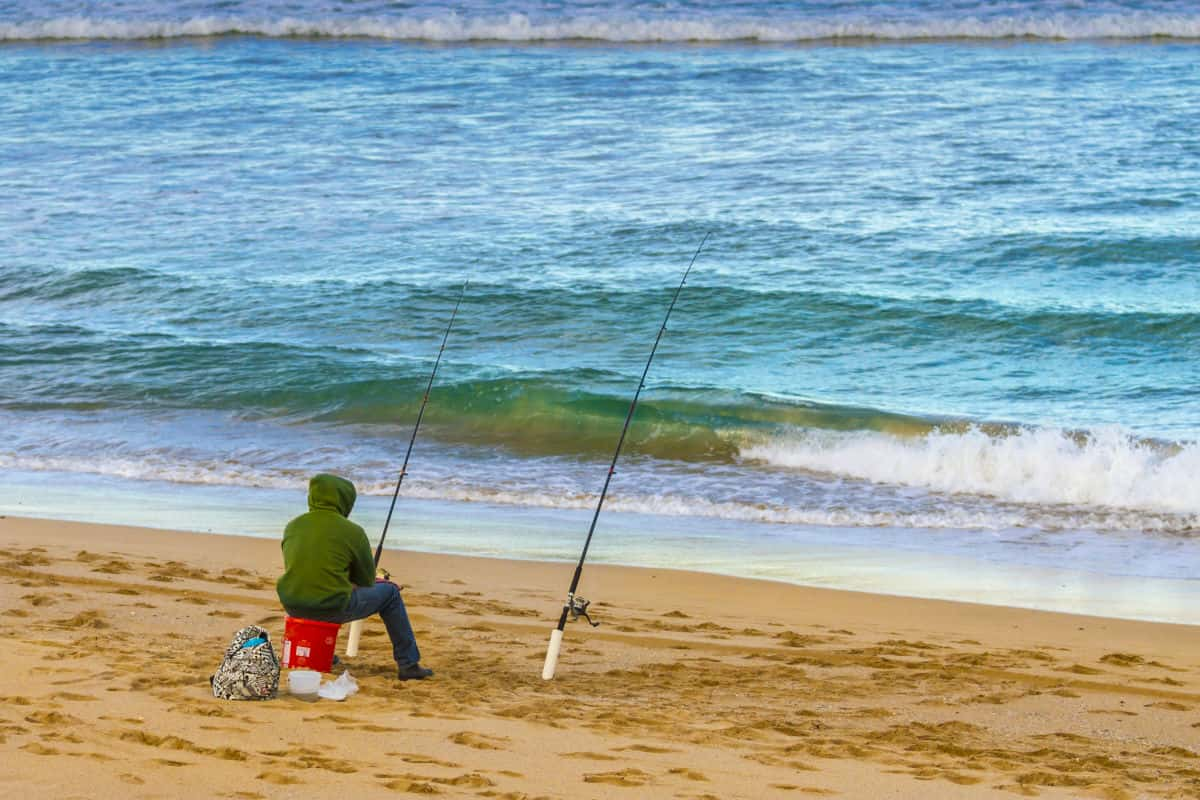 How To Choose The Best Surf Fishing Rods? The Complete ...