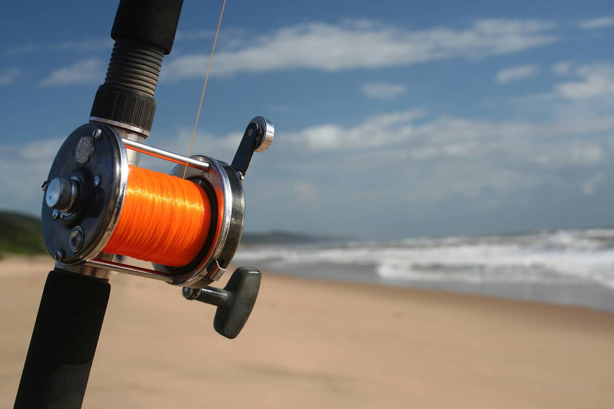The Best Mono Line For Surf Fishing