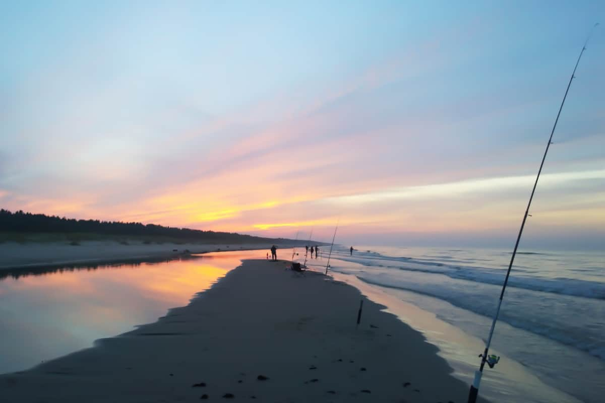 What-is-the-Best-Time-Tide-Weather-Condition-And-Water-Temperature-For-Surf-Fishing-