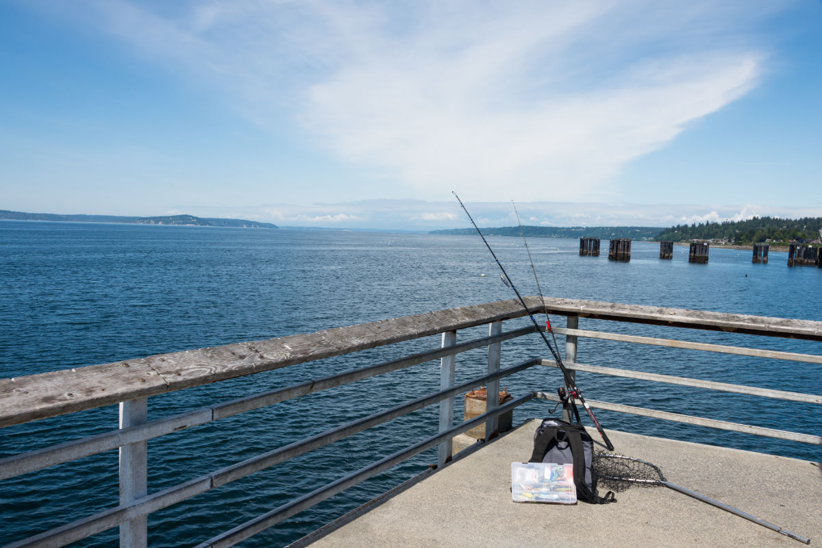 Do-You-Need-A-Net-When-Fishing-On-A-Pier.