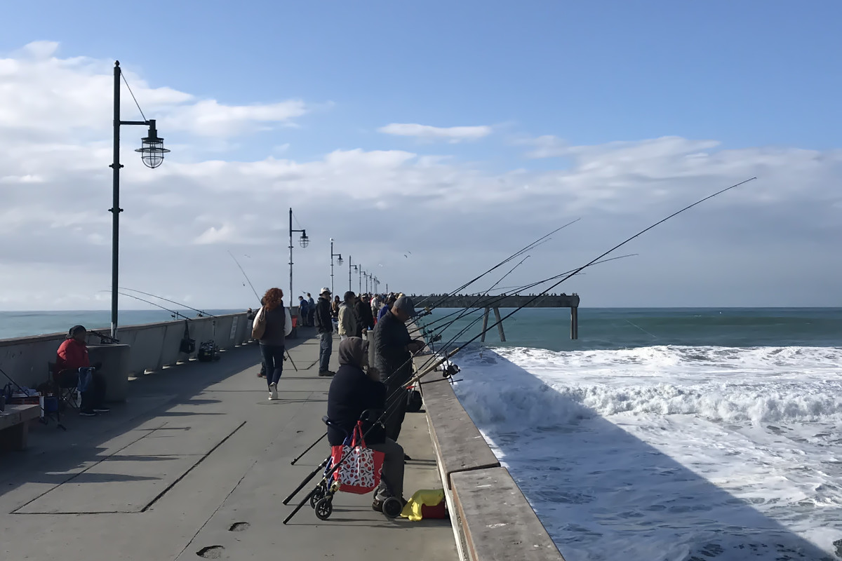 How To Land A Fish From A Pier